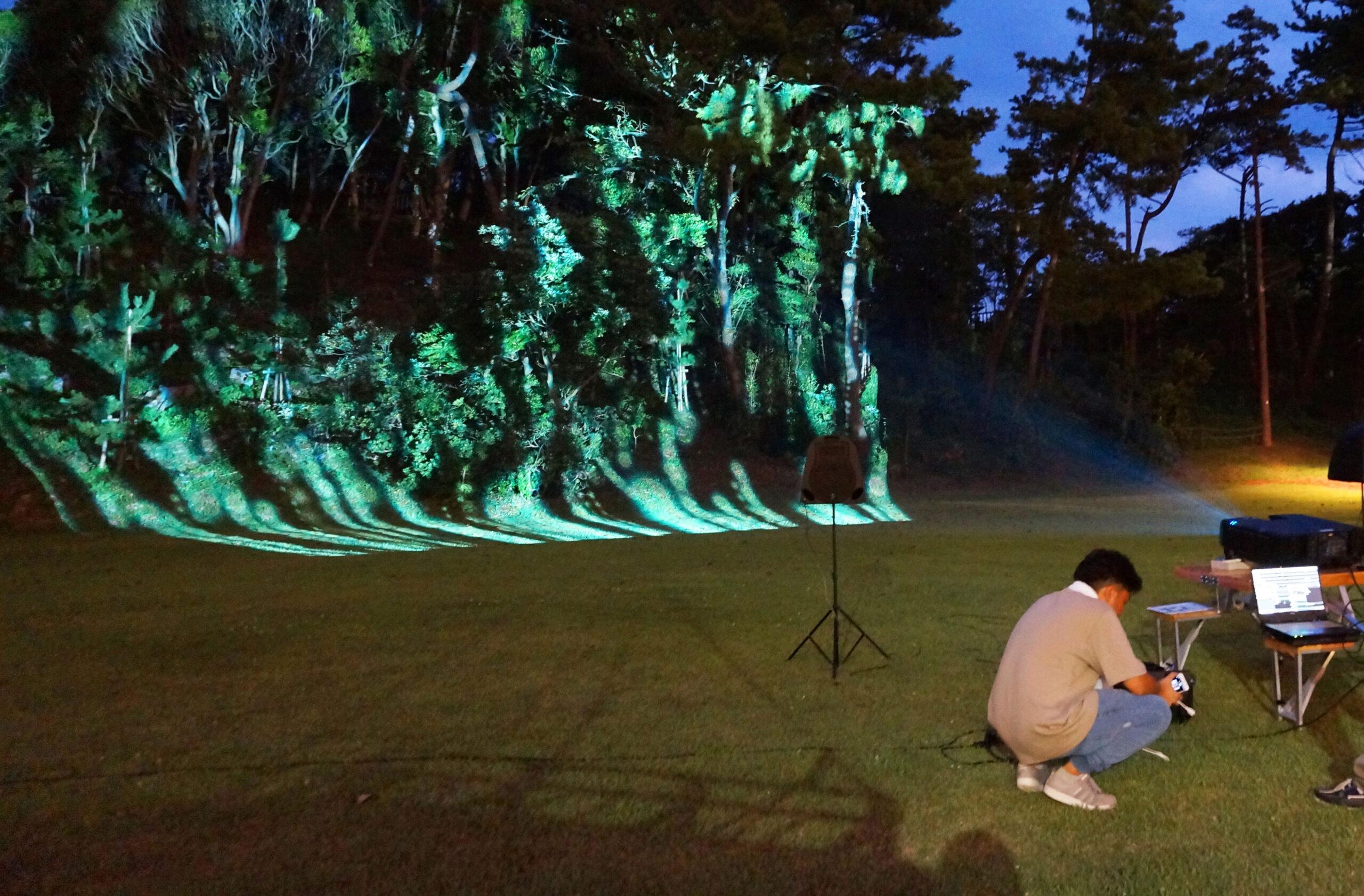 森林への投影例